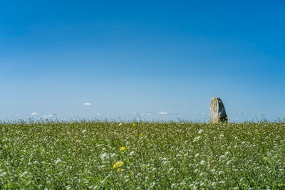 Standing stone in meadow near Aghade Bridge, Tullow County Carlow